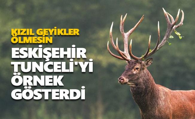 Eskişehir Tunceli'yi örnek gösterdi