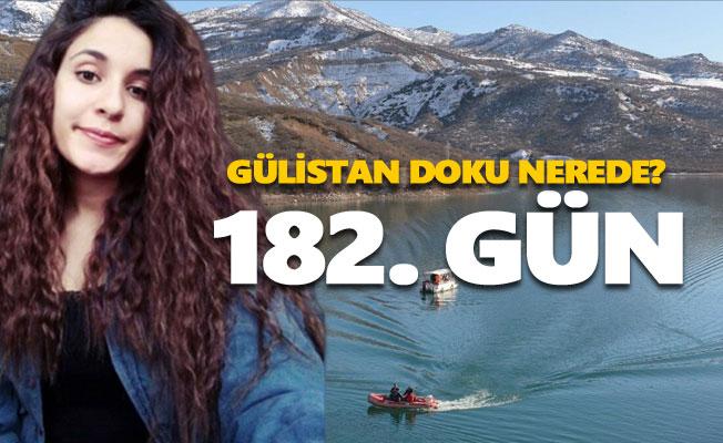 Gülistan Doku'yu arama çalışmaları 182. gününde
