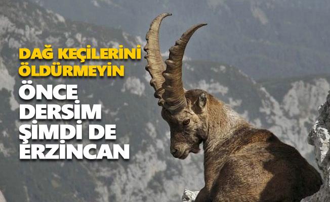 Dersim'den sonra şimdi de Erzincan'da ihale açıldı