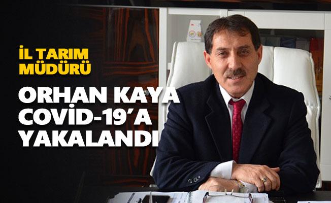 İl Tarım Müdürü Orhan Kaya Covid-19'a yakalandı