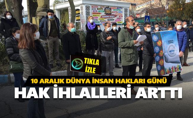 Dünya İnsan Hakları Günü nedeniyle Dersim'de açıklama yapıldı