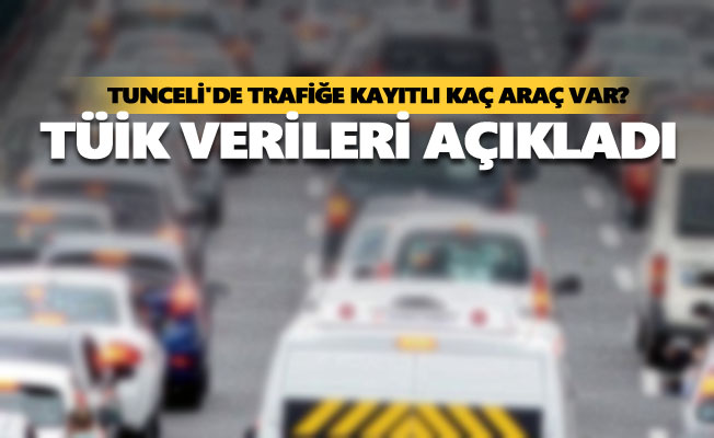 Tunceli'de trafiğe kayıtlı kaç araç var?