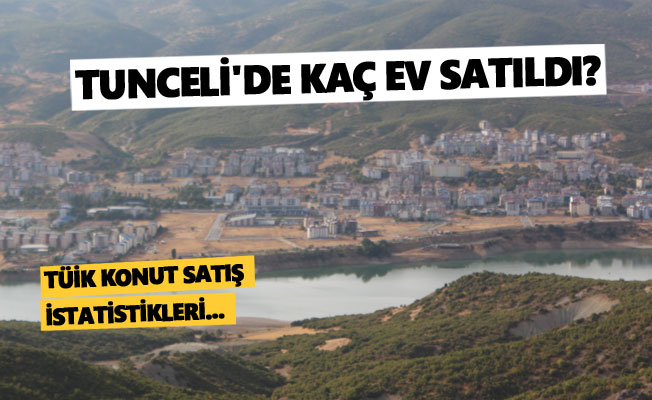 Tunceli'de 2020 yılında kaç konut satıldı?