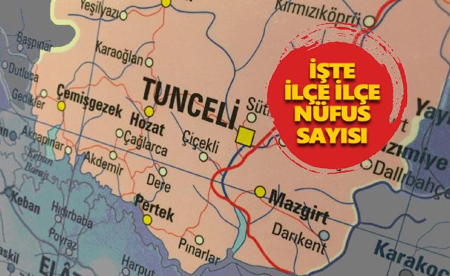 Tunceli Merkez'in nüfusu 1 yılda sadece 2 kişi arttı