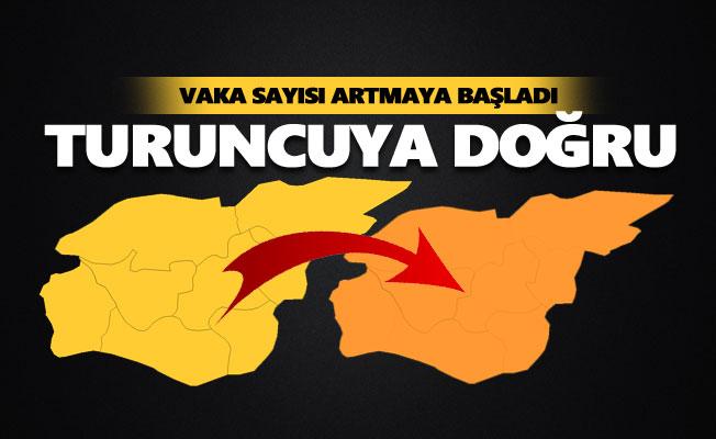 Tunceli'de vaka sayısı artmaya başladı