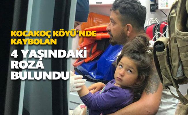 Kocakoç Köyü'nde kaybolan 4 yaşındaki Roza bulundu