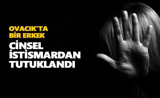 Ovacık'ta bir erkek cinsel istismardan tutuklandı