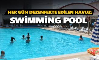 Her gün dezenfekte edilen havuz: Swimming Pool