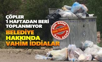 Tunceli Belediyesi hakkında vahim iddialar