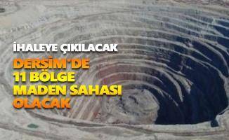 Dersim'de 11 bölge maden sahası olacak