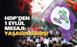 HDP'den 1 Eylül mesajı: Yaşasın barış!