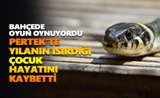 Pertek'te yılanın ısırdığı çocuk hayatını kaybetti