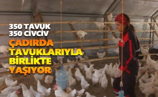 22 yıl özel sektörde çalıştıktan sonra köyüne dönerek tavukçuluğa başladı