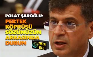 Polat Şaroğlu: Pertek Köprüsü sözünüzün arkasında durun
