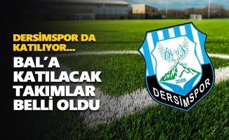 Bölgesel Amatör Lig'e katılacak takımlar belli oldu