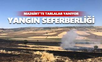 Mazgirt'te tarlalar yanıyor