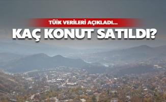 Tunceli'de haziran ayında satılan konut sayısı belli oldu