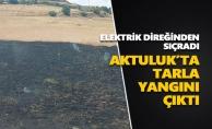 Aktuluk'ta tarla yangını